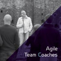 Agile Team Coaches