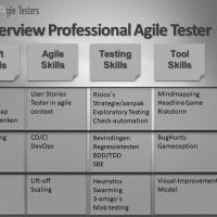 Professional Agile Tester